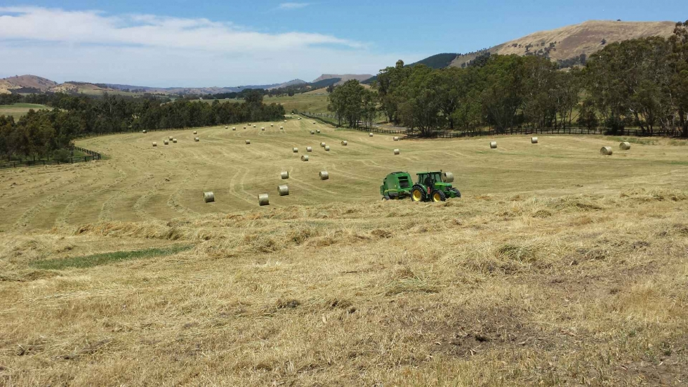 Ready for Hay Contracting